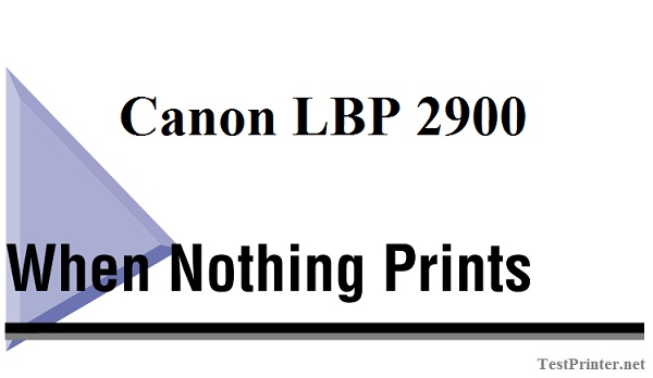 What Should I Do if Canon LBP 2900 nothing prints